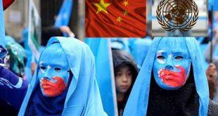 Kızıl Çin,BM'deki oturumlara katılıp aktivistlerin isimlerini aldığı ortaya çıktı